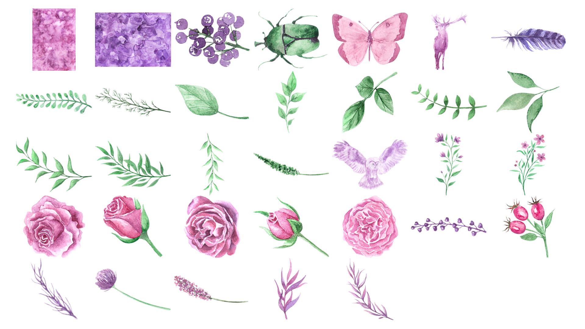 Colección Mágica Floral Elementos